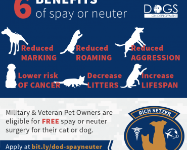 6 benefits of spay or neuter